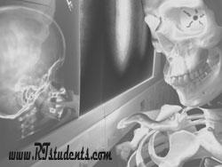 Radiograph X-ray